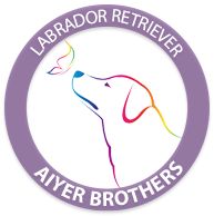 AiyerBrothers Logo